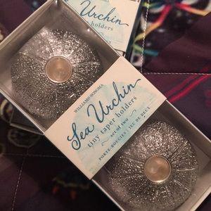 Williams Sonoma Sea Urchin tiny taper holders